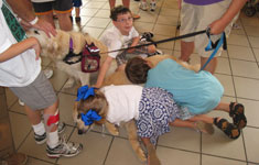 Kids with Service Dog